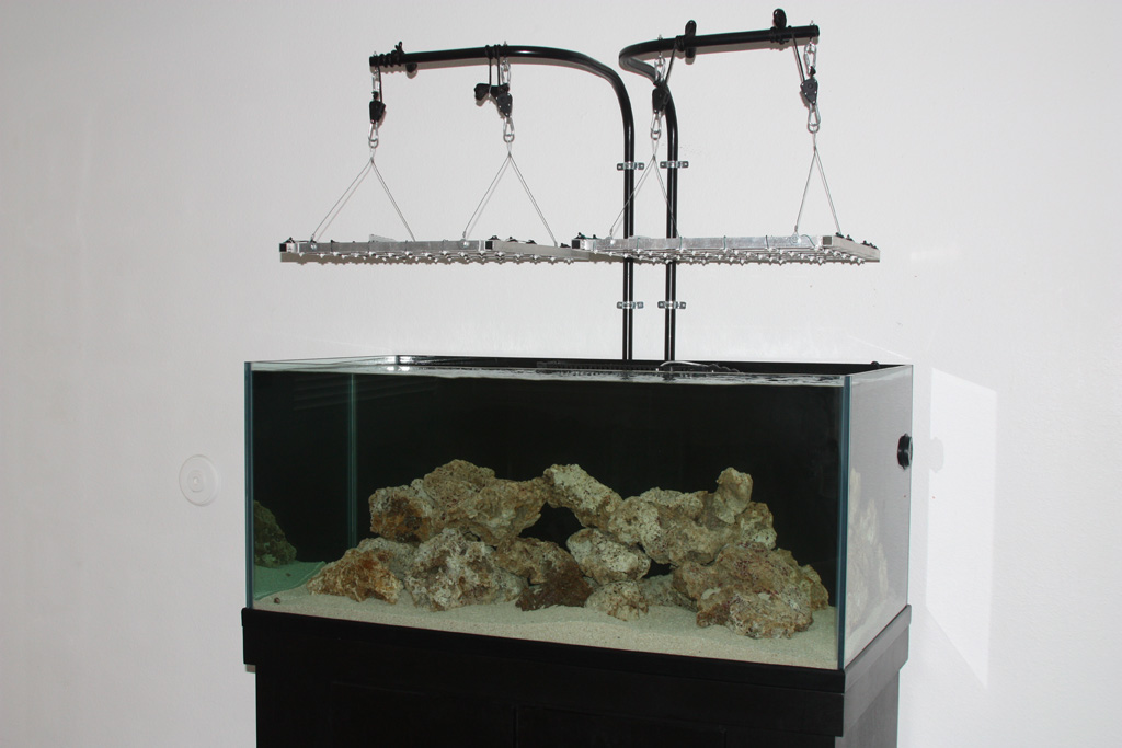 Dsa Neo 105 Rimless Mixed Reef Reef Central Online